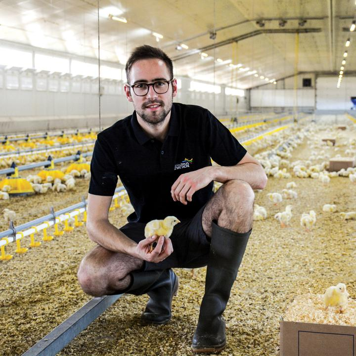 broilers-france-jeremy-choquet-source-journal-paysan-breton
